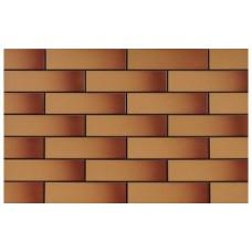 Плитка фасадна глазурована Miodowa szkliwiona 24,5х6,5 (кв.м)