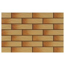 Плитка фасадна рустикальна Gobi, Гобі 24,5х6,5 (кв.м)