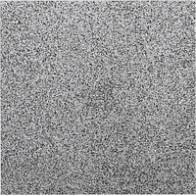 Плитка грес пол. Milton Серый   29.8*29.8 (кв.м)